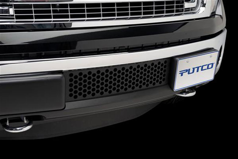2014 Ford F-150 EcoBoost Bumper Black Punch Grille Inserts