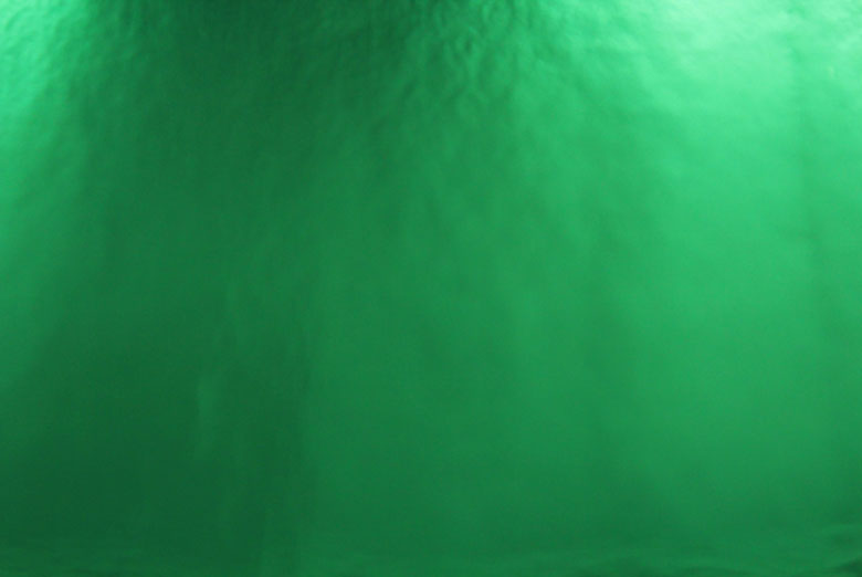 Rwraps Vinyl Film - Green